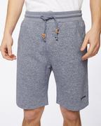 Slate Shorts