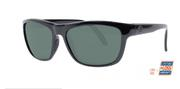 Waterline Ebony/Core Grey Sunglasses